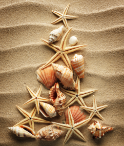 Beach-Shell-Christmas-Tree