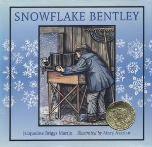 1999_Snowflake_Bentley