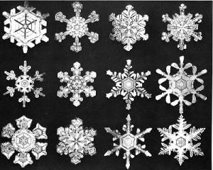 bentley-snowflakes